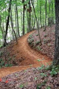 Trail Work Day – January 31, 2015